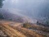 рали Чили, WRC