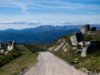 рали Португалия, WRC